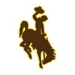 Wyowing Cowboys