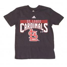 MLB Licensed St Louis Cardinals YOUTH Block Print T-Shirt (Large 14-16)