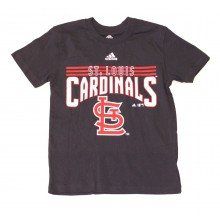 MLB Licensed St Louis Cardinals YOUTH Block Print T-Shirt (Large 14-16)