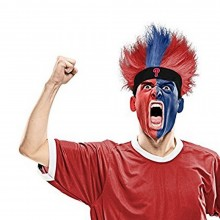 MLB Officially Licensed Philadelphia Phillies Fuzz Head Bleacher Wig