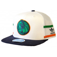 NBA Licensed Dallas Mavericks White Mesh 2 Stripes Snapback Hat Cap Lid