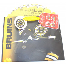 Boston Bruins Medium GoGo Gift Bag