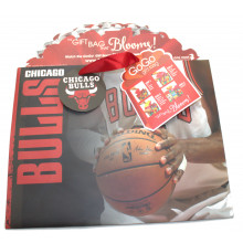 Chicago Bulls Medium GoGo Gift Bag