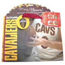 Cleveland Cavaliers Medium GoGo Gift Bag
