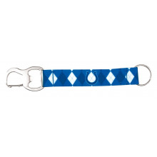 Indianapolis Colts Argyle Carabiner Lanyard Key Chain