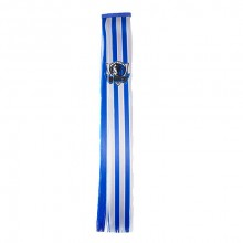 NBA Dallas Mavericks Team Hair Clip