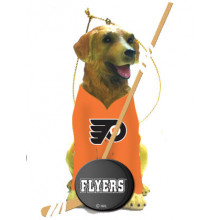 Philadelphia Flyers Golden Retriever Team Dog Ornament
