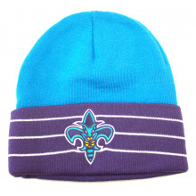 Charlotte Hornets Teal Purple Striped Cuff Beanie