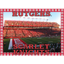 Rutgers Scarlet Knights 500 Piece Puzzle