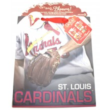 St. Louis Cardinals Large GoGo Gift Bag