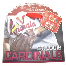 St. Louis Cardinals Medium GoGo Gift Bag