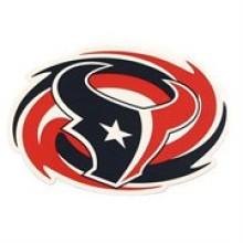 "Houston Texans 11"" X 8"" Swirl Sport Magnet"