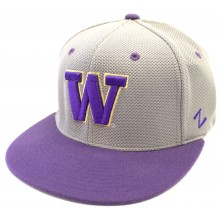 Washington Huskies Capture Flex fit Flatbill Size M/L Hat