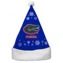 NCAA Florida Gators Full Embroidered Snowflake Santa Hat