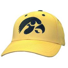 Bama NCAA Officially Licensed Iowa Hawkeyes Large Logo Hat Cap Lid