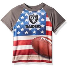NFL Las Vegas Raiders Unisex Short-Sleeve Tee, Gray, 2T