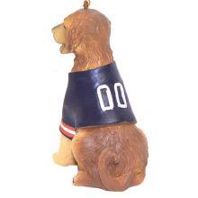 NFL Licensed Denver Broncos Team Dog Ornament