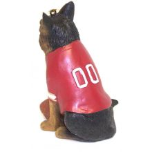 NFL Licensed San Francisco 49ers Team Dog Ornament