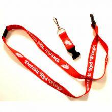 NHL Detroit Red Wings Team Color Breakaway Lanyard Key Chain