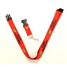 NHL Chicago Blackhawks Team Color Breakaway Lanyard Key Chain