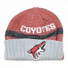 NHL Officially Licensed Arizona Coyotes Faded Red Gray Team Name Cuffled Beanie