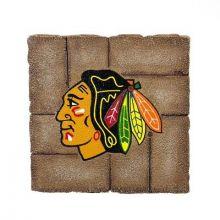 Chicago Blackhawks 12 inch x 12 inch Garden Stone