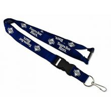 MLB Tampa Bay Rays Team Color Breakaway Lanyard Key Chain