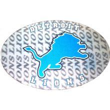 "Detroit Lions 3-D 9"" X 6"" Oval Ultradepth Hologram Magnet"